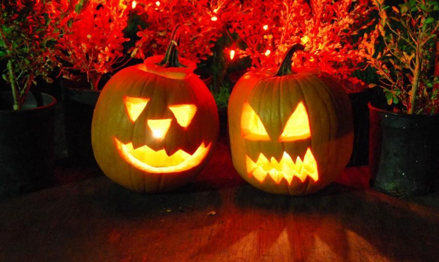 Once+the+Jack+%27o+Lantern+is+carved%2C+leftover+guts+make+tantalizing+treats.+