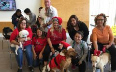Campus Rec Brings In Therapy Dogs