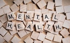 New College Event Spotlights Mental Illness, Suicide Prevention