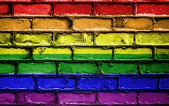 Safe Zone Sessions Encourage Alliances with LGBT Community