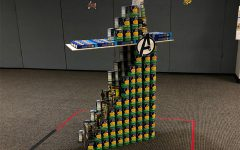 CANstruction Contest Stocks New Food Market Shelves
